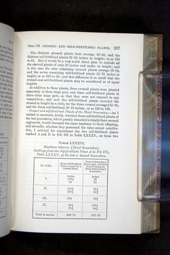 Image of Darwin-F1249-1876-207