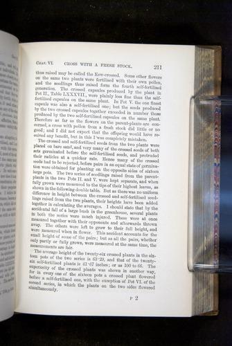 Image of Darwin-F1249-1876-211