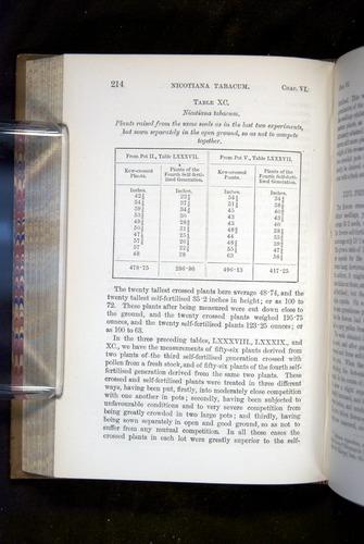 Image of Darwin-F1249-1876-214