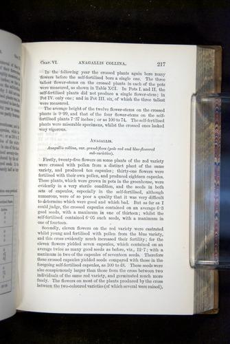 Image of Darwin-F1249-1876-217