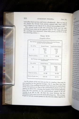 Image of Darwin-F1249-1876-218