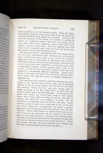 Image of Darwin-F1249-1876-223