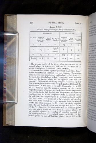 Image of Darwin-F1249-1876-224