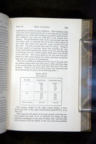 Image of Darwin-F1249-1876-229