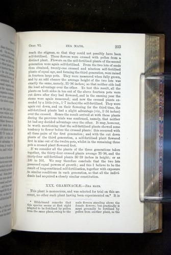 Image of Darwin-F1249-1876-233