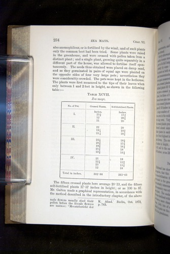 Image of Darwin-F1249-1876-234