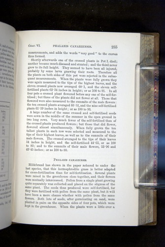 Image of Darwin-F1249-1876-235