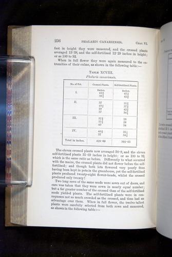 Image of Darwin-F1249-1876-236