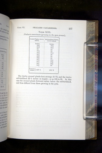 Image of Darwin-F1249-1876-237