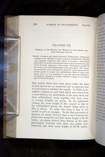 Image of Darwin-F1249-1876-238