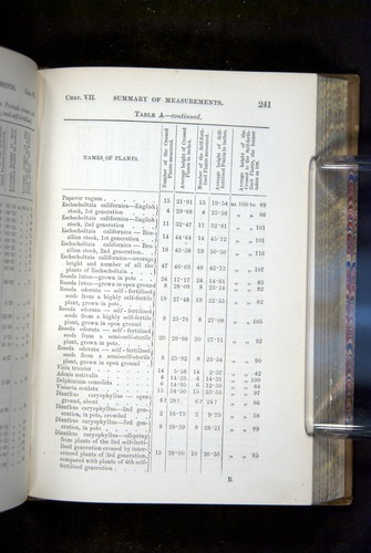 Image of Darwin-F1249-1876-241