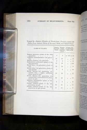 Image of Darwin-F1249-1876-244
