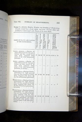 Image of Darwin-F1249-1876-245
