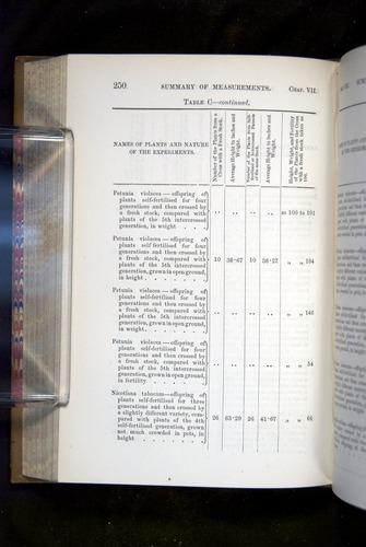 Image of Darwin-F1249-1876-250