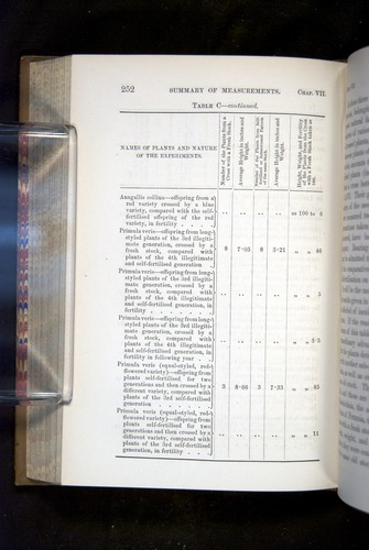 Image of Darwin-F1249-1876-252