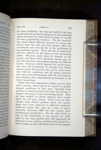 Image of Darwin-F1249-1876-255
