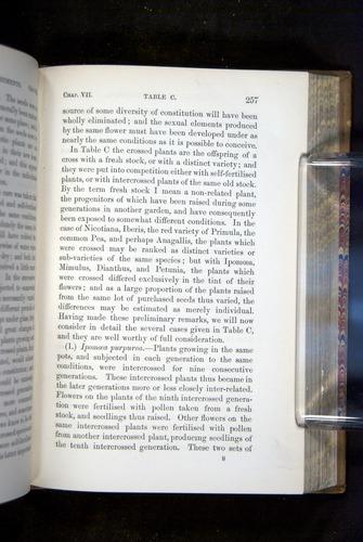 Image of Darwin-F1249-1876-257