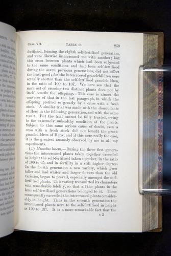 Image of Darwin-F1249-1876-259