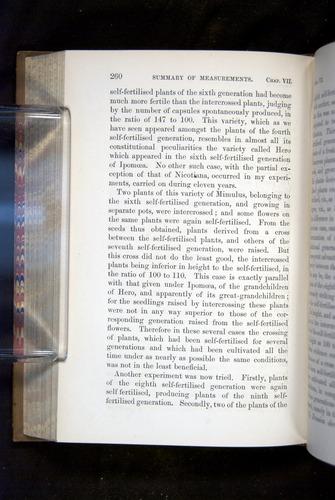 Image of Darwin-F1249-1876-260