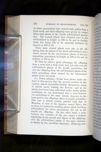Image of Darwin-F1249-1876-264