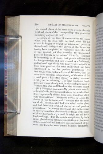 Image of Darwin-F1249-1876-266
