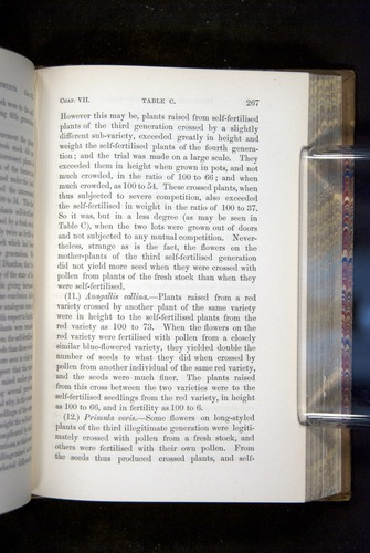 Image of Darwin-F1249-1876-267