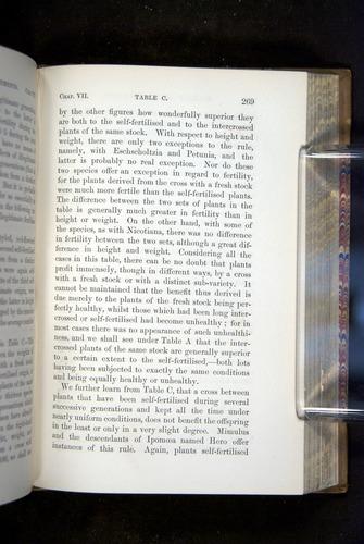 Image of Darwin-F1249-1876-269