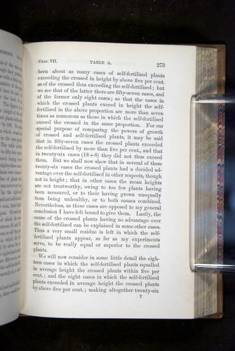 Image of Darwin-F1249-1876-273
