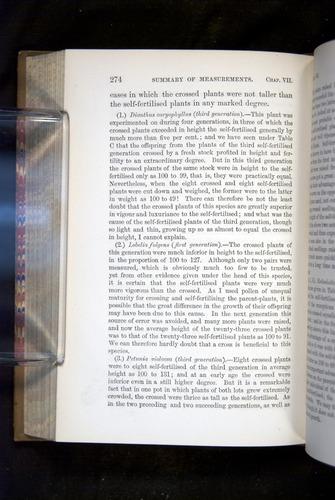Image of Darwin-F1249-1876-274
