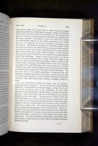 Image of Darwin-F1249-1876-275