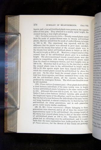 Image of Darwin-F1249-1876-278