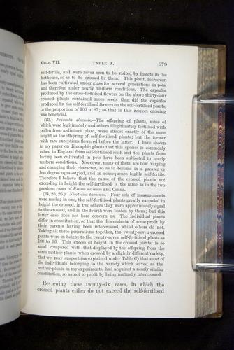 Image of Darwin-F1249-1876-279