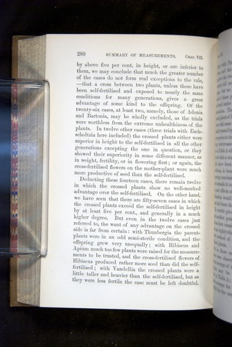 Image of Darwin-F1249-1876-280