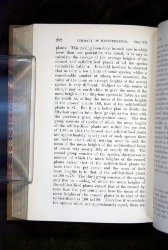 Image of Darwin-F1249-1876-282