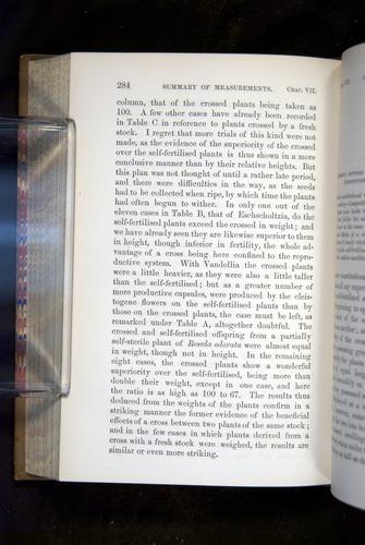 Image of Darwin-F1249-1876-284
