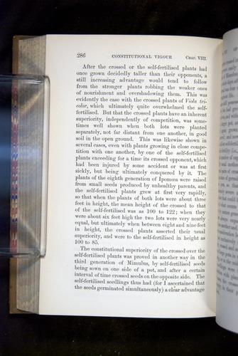 Image of Darwin-F1249-1876-286