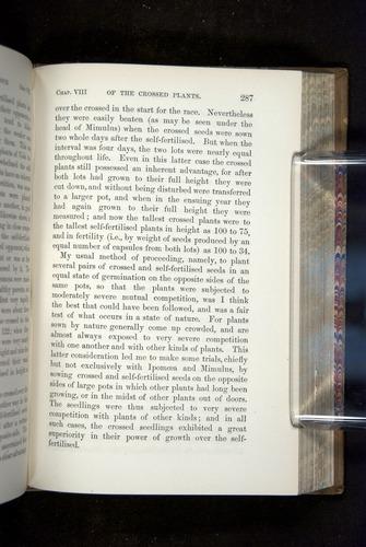 Image of Darwin-F1249-1876-287