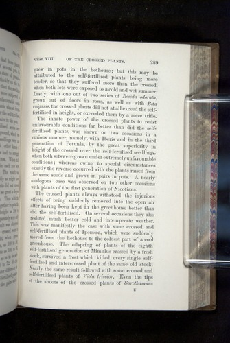 Image of Darwin-F1249-1876-289