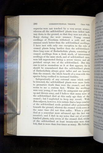 Image of Darwin-F1249-1876-290