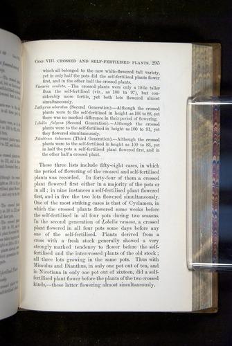 Image of Darwin-F1249-1876-295