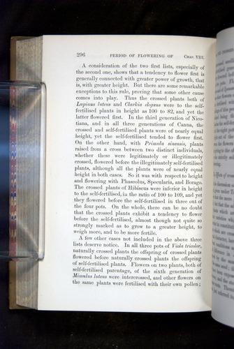 Image of Darwin-F1249-1876-296