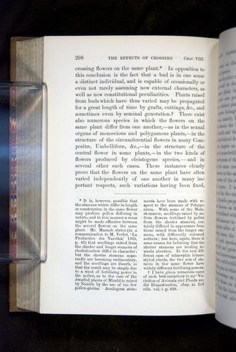 Image of Darwin-F1249-1876-298