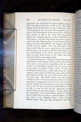 Image of Darwin-F1249-1876-300