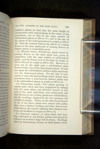 Image of Darwin-F1249-1876-301