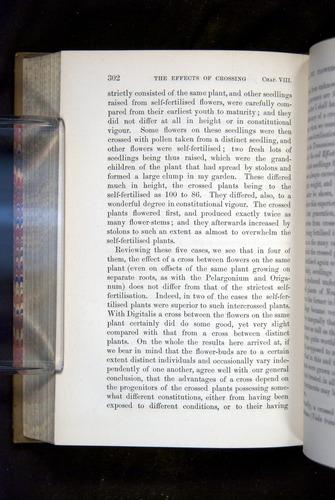 Image of Darwin-F1249-1876-302