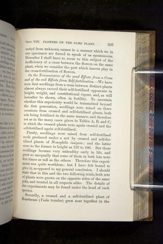 Image of Darwin-F1249-1876-303