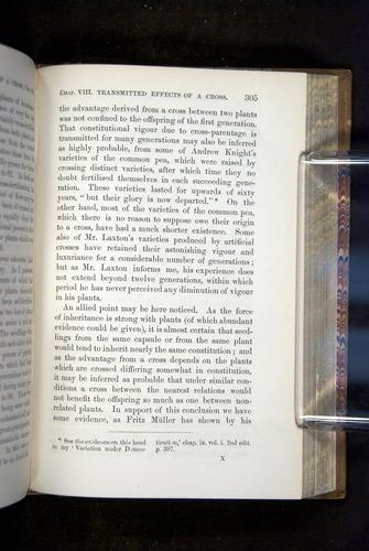Image of Darwin-F1249-1876-305