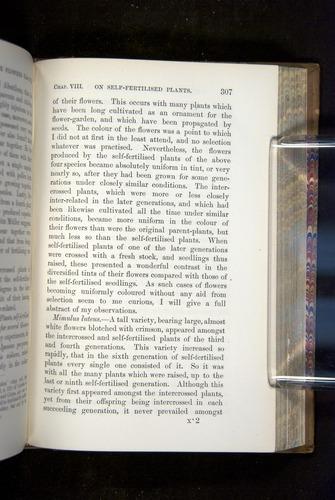 Image of Darwin-F1249-1876-307