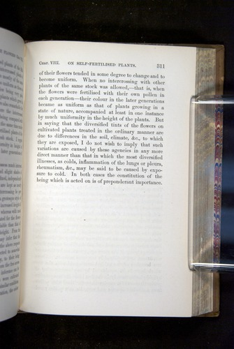Image of Darwin-F1249-1876-311