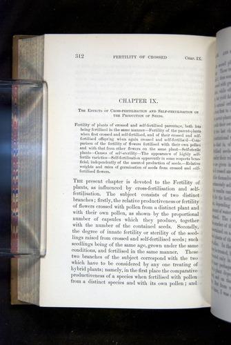 Image of Darwin-F1249-1876-312
